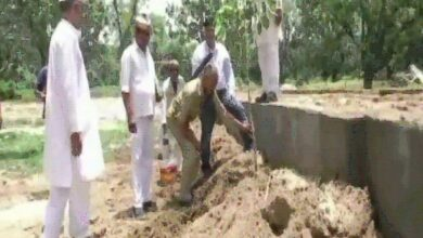 Photo of SDM in Amroha makes culprits plant saplings as they get bail
