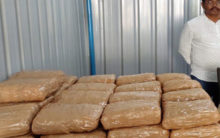 Telangana: One arrested with 100 kg of Marijuana