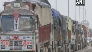 Photo of India permits Pakistan to re-export dried dates
