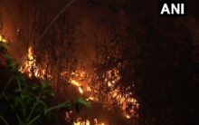 J-K: Fire breaks out in some bushes in Udhampur, no casualties reported