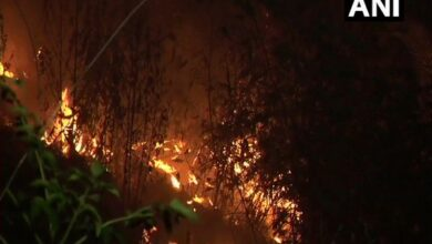 Photo of J-K: Fire breaks out in some bushes in Udhampur, no casualties reported