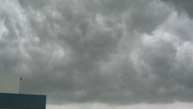 Photo of Heavy rainfall expected in Delhi, NCR in the next 24 hours: IMD