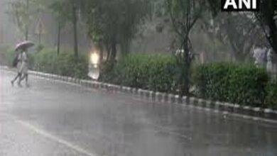 Photo of Delhi, Mumbai to receive light rains today: IMD