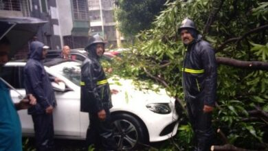 Photo of Thane: Trees fall on car in Raheja Garden, no casualties