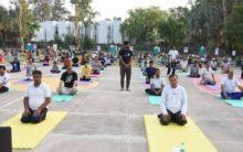 AMU completes week-long Yoga Day celebrations