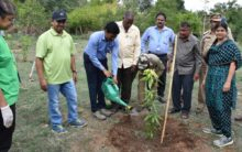 3,000 saplings planted in Dell green drive at Zoo Park