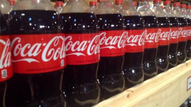 Photo of Coca-Cola India announces changes in leadership team