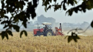 Photo of Centre increases MSP of paddy, Kharif crops