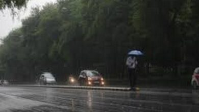 Photo of 9 killed in Karnataka rain fury, normal life hit