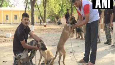 Photo of MP govt transfers police dogs and handlers, BJP takes a dig!