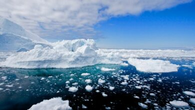 Photo of Greenland may become ice-less by the year 3000: Study