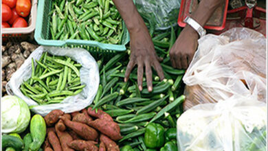 Photo of WPI inflation rate edges 0.2 pc up in June at 2.02 pc