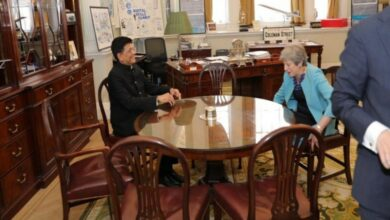 Photo of Piyush Goyal meets Theresa May in London
