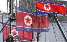 N.Korean media confirms multiple rocket launcher test