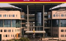 PNB stock drops by 10 pc after detecting fraud by Bhushan Power and Steel worth Rs 3,805 crore