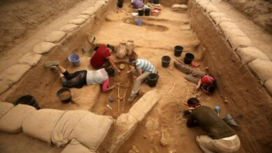 Photo of Researchers say ancient Philistine town located in Israel