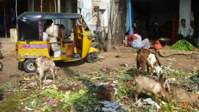 Photo of IPS officer vows to make Hyderabad garbage-free city