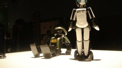 Photo of Robots can influence children's opinions significantly: Research