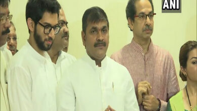 Photo of I'll not work to break NCP, but will strengthen Shiv Sena