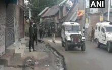 Top Jaish commander, associate gunned down in Shopian