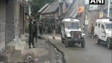 Photo of Top Jaish commander, associate gunned down in Shopian