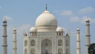 Photo of Chinese man caught flying drone over Taj Mahal