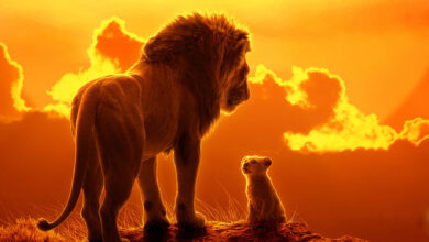 Photo of 'The Lion King' records massive box-office opening, crosses 50CR