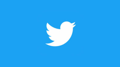 Photo of Twitter bug may have accidentally leaked your data