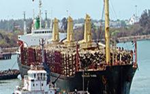 Cargo transportation on waterways reaches 72.31 million tonnes