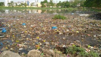 Photo of Langer Houz Lake that poisons air and water