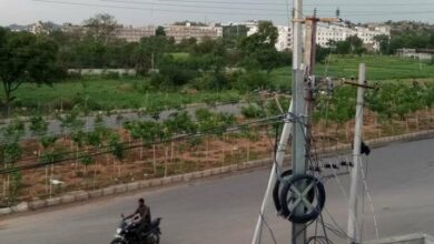 Photo of GHMC has big plans to make city green again