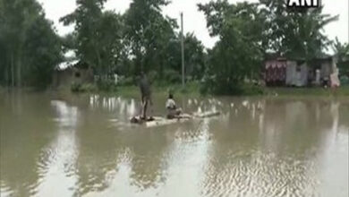 Photo of Death toll in Assam floods touches 37