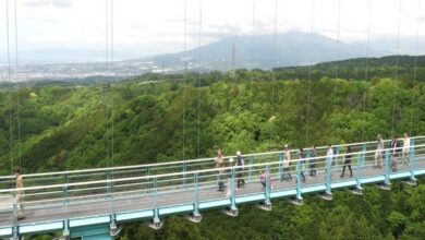 Photo of Mishima Skywalk in Japan attracts foreign tourists