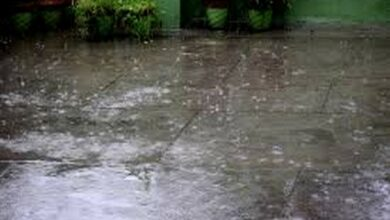 Photo of IMD predicts heavy rainfall in UP, K'taka