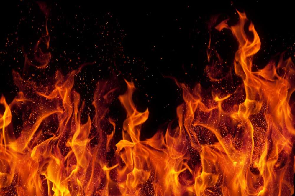 Delhi: Fire breaks out in paper godown, no casualties reported