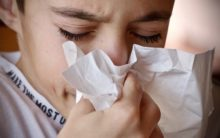 Strain of common cold virus could treat cancer cells in bladder