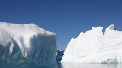Photo of Antarctic sea ice in dizzying decline since 2014: study