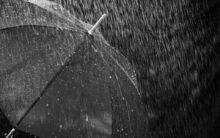 Heavy rainfall likely in U'khand, Odisha, Tamil Nadu: IMD