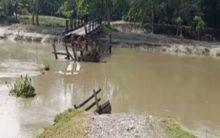 8 killed in Odisha rain, floods