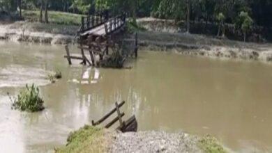 Photo of Heavy rainfall washes away wooden bridges in Nalbari village