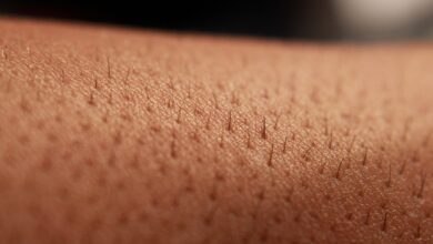Photo of Skin nerves anticipate and fight infection: study