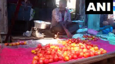 Photo of Delhi: Tomato prices surge up to Rs 80 per kg as monsoon disrupt