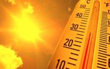 Japan heat leaves 23 dead, over 12,500 people hospitalized