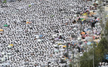 HAJJ – THE JOURNEY OF A LIFETIME: THE DAY OF ARAFAH