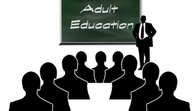 Photo of Adult Education: Unique scheme to teach elders