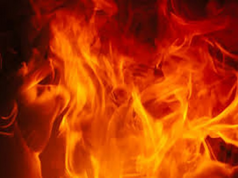 Fire breaks out in paper factory in north Delhi