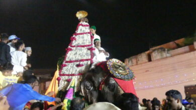 Photo of Karnataka Elephant takes part in Giarveeh rally in Hyderabad