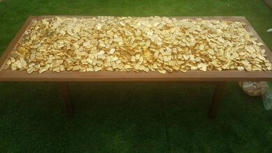 Photo of 303 kg fake gold biscuits seized from IMA founder's residence