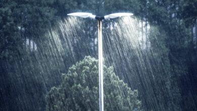 Photo of Saurashtra, Kutch to receive heavy rainfall today: IMD