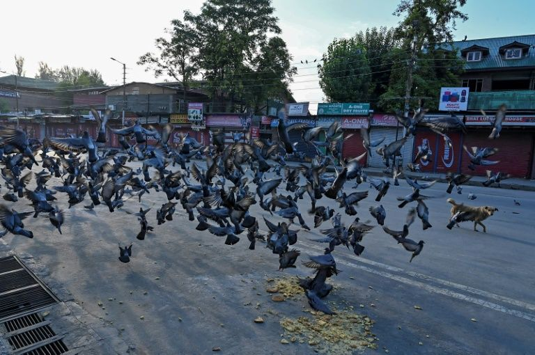 lockdown a major blow for Kashmir tourism